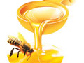 蜂蜜中毒解毒方法早知道